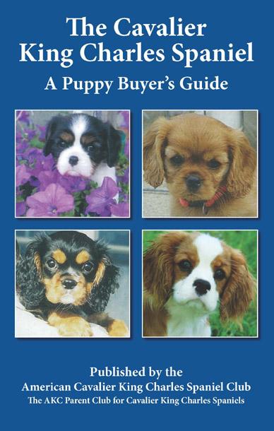 Puppy Buyer's Guide 12 Copies