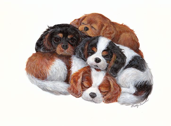 Futurity Puppy Nomination