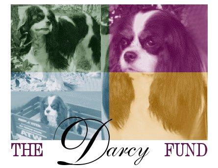Darcy (Heart Fund) Donation $25